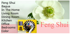 ST - theHome - FengShui-HappyHomeZone